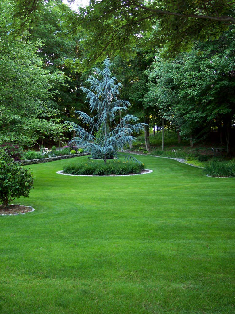 Kelly's Landscaping Milford CT